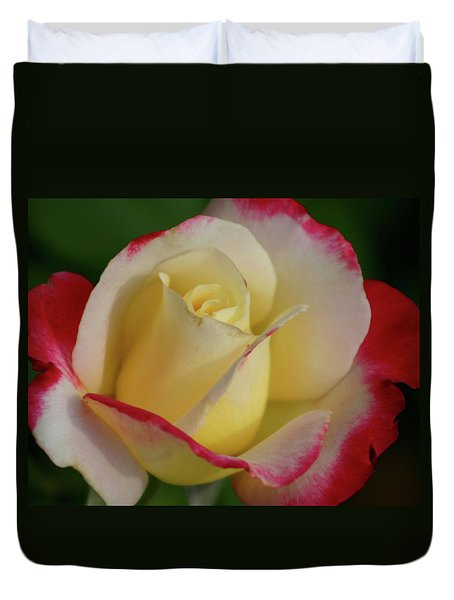 Rose 3913 Duvet Cover