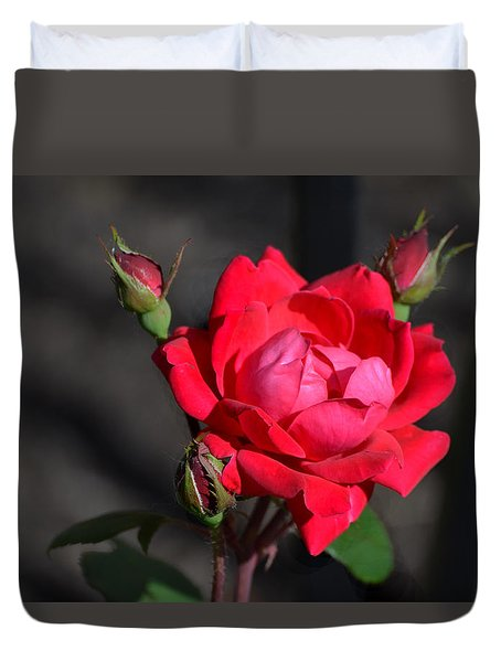 Duvet Cover featuring the photograph Rose And Shadows by Kathleen Stephens
