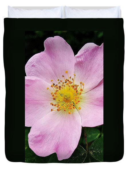Rose And Sun Duvet Cover by Felicia Tica