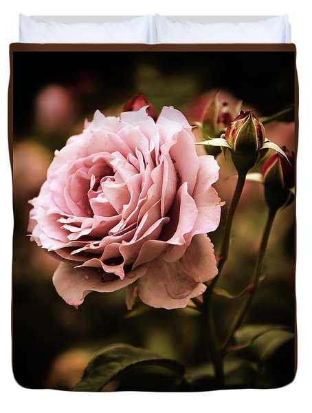 Rose Blooms At Dusk Duvet Cover by Jessica Jenney