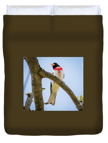 Duvet Cover featuring the photograph Rose-breasted Grosbeak Looking At You by Ricky L Jones