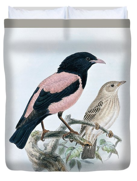 Rose Colored Starling Duvet Cover
