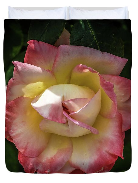 Rose From Mable Ringling's Garden Duvet Cover