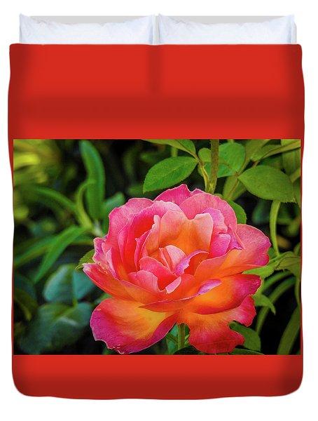 Rose In The Evening Duvet Cover