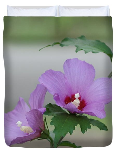 Rose Of Sharon Pair Duvet Cover