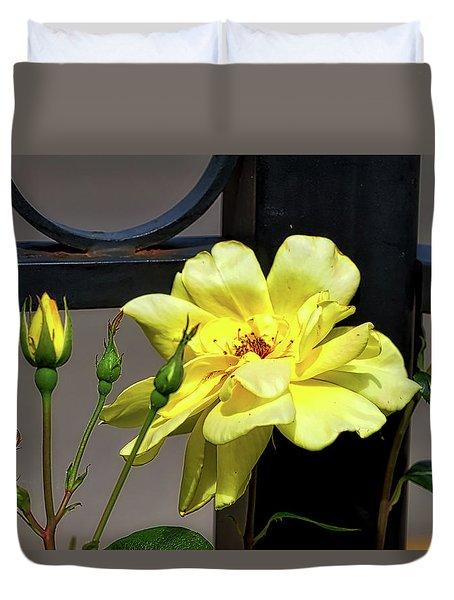 Rose On Wrought Iron Duvet Cover