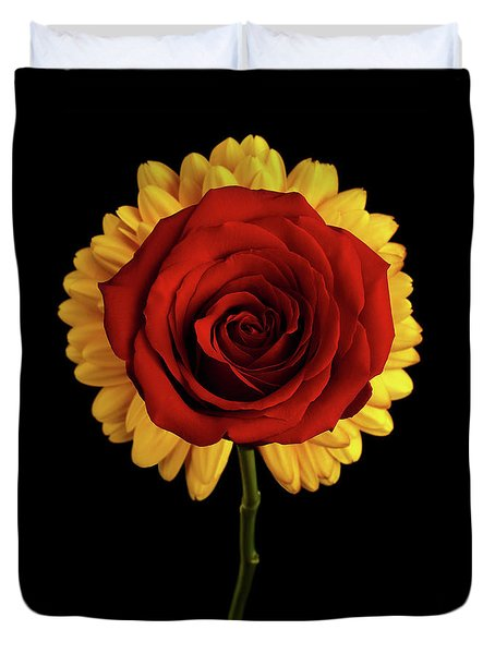 Rose On Yellow Flower Black Background Duvet Cover by Sergey Taran