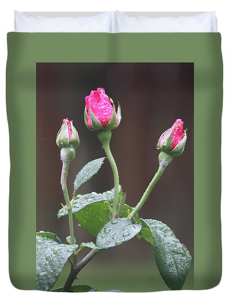 Duvet Cover featuring the photograph Rose Trio by Vadim Levin