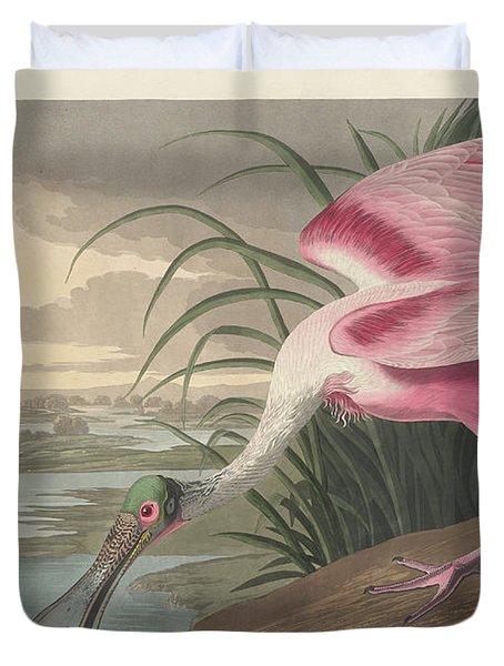 Roseate Spoonbill, 1836  Duvet Cover