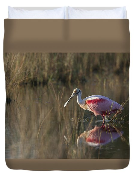 Roseate Spoonbill In Morning Light Duvet Cover