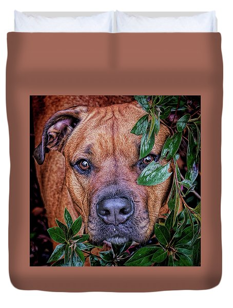 Duvet Cover featuring the photograph Rosebud by Lewis Mann