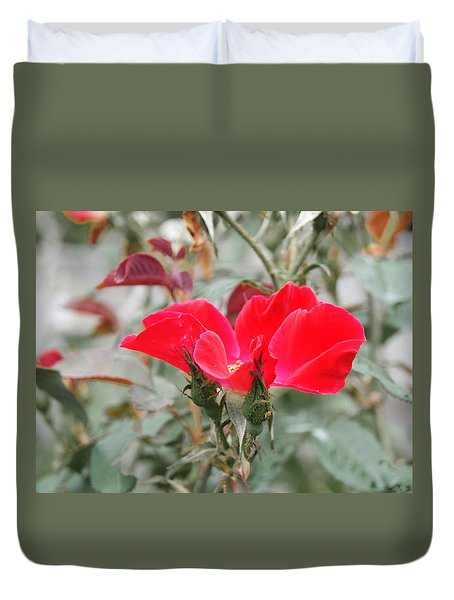 Rosebuds N Red Rose Duvet Cover