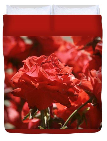 Roses 3 Duvet Cover