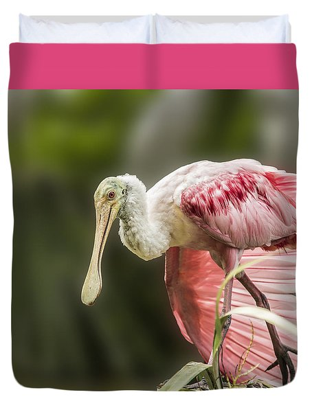 Duvet Cover featuring the photograph Rosette Spoonbill Wings by Paula Porterfield-Izzo