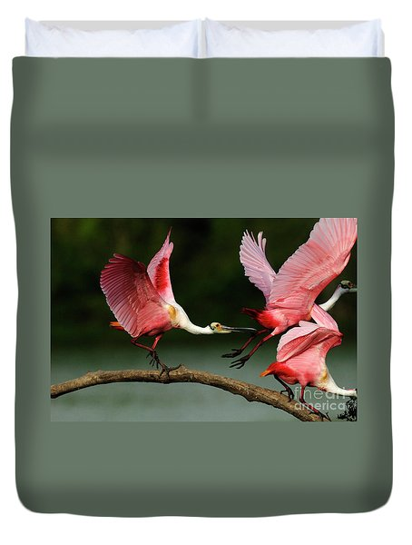 Rosiette Spoonbills Lord Of The Branch Duvet Cover by Bob Christopher
