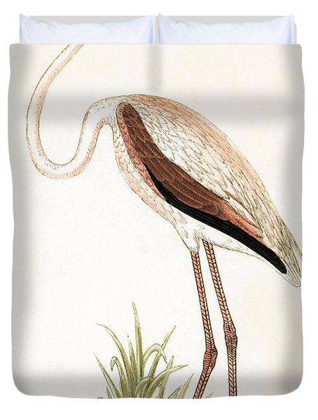 Rosy Flamingo Duvet Cover