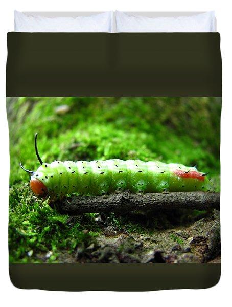 Rosy Maple Moth Caterpillar Duvet Cover