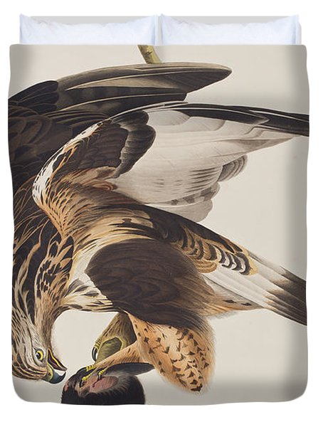 Rough Legged Falcon Duvet Cover by John James Audubon