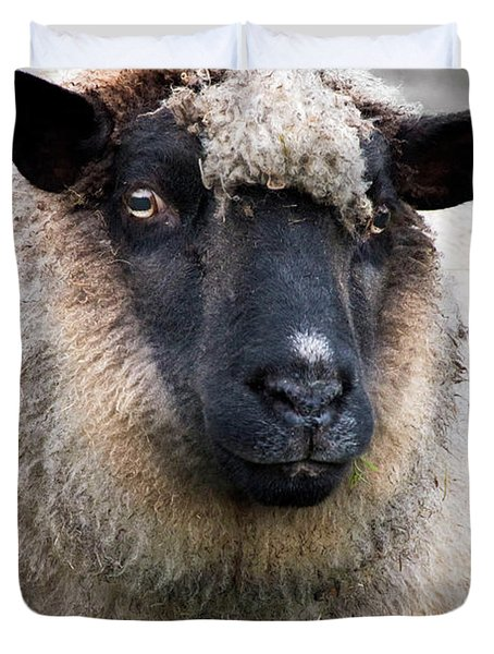 Round Sheep Duvet Cover