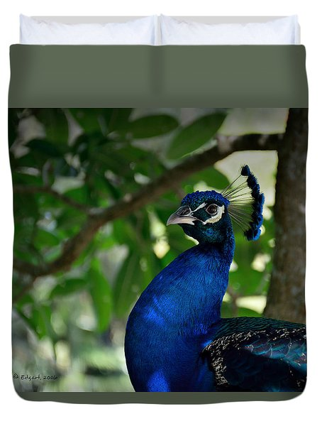 Royal Blue Duvet Cover