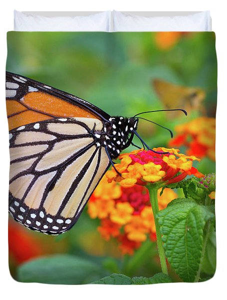 Royal Butterfly Duvet Cover by Shelley Neff