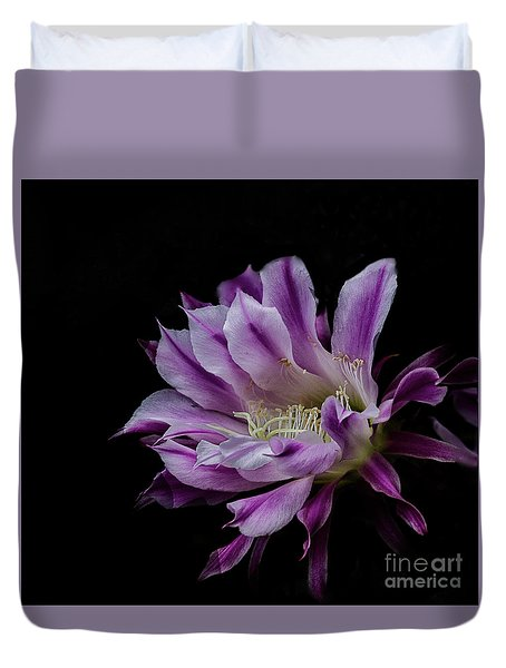 Royal Purple And White Bloom Duvet Cover by Ruth Jolly