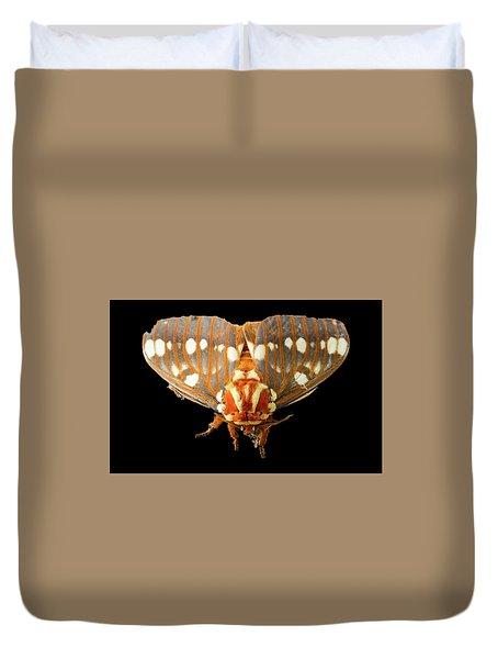 Royal Walnut Moth On Black Duvet Cover