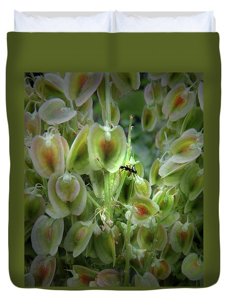 Rubarb Seed Flower And The  Ant Duvet Cover