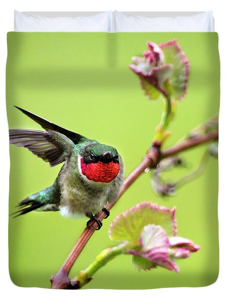 Duvet Cover featuring the photograph Ruby Garden Hummingbird by Christina Rollo
