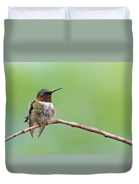 Ruby-throated Hummingbird #2 Duvet Cover