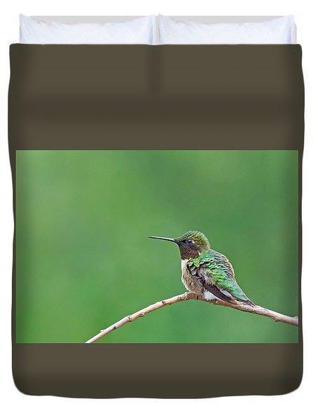 Ruby-throated Hummingbird #3 Duvet Cover
