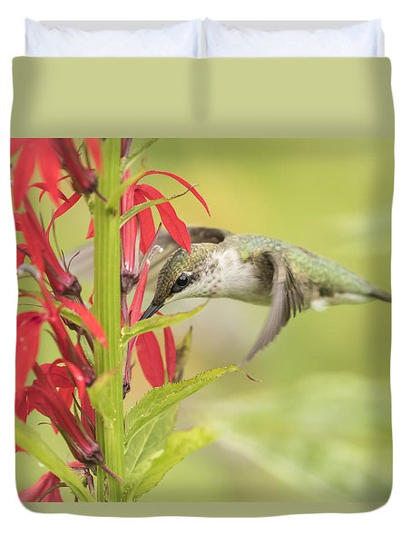 Ruby Throated Hummingbird 6-2015 Duvet Cover