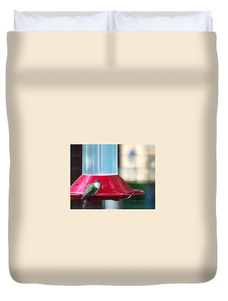 Ruby-throated Hummingbird At Feeder Duvet Cover by Edward Peterson