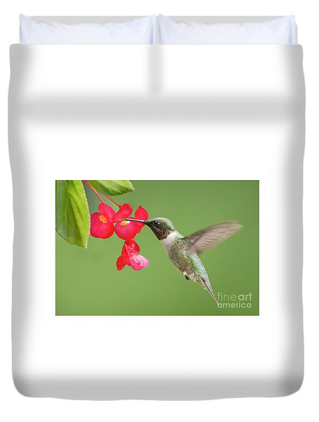 Duvet Cover featuring the photograph Ruby Throated Hummingbird Feeding On Begonia by Bonnie Barry