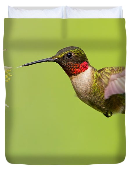 Ruby-throated Hummingbird Duvet Cover by Mircea Costina Photography