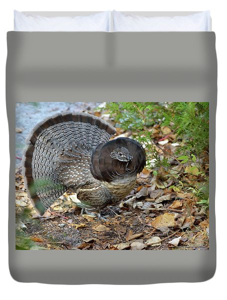 Ruffed Up- Ruffed Grouse Displaying Duvet Cover