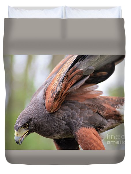 Ruffled Feathers Duvet Cover
