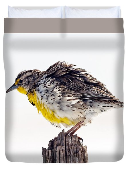 Duvet Cover featuring the photograph Ruffled Feathers Meadowlark by Stephen  Johnson