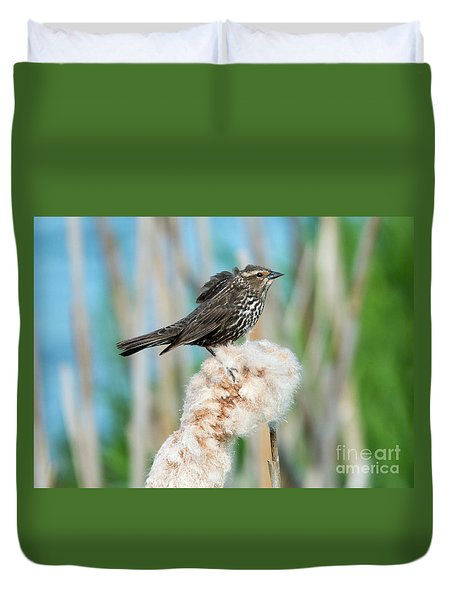 Ruffled Feathers Duvet Cover by Mike Dawson
