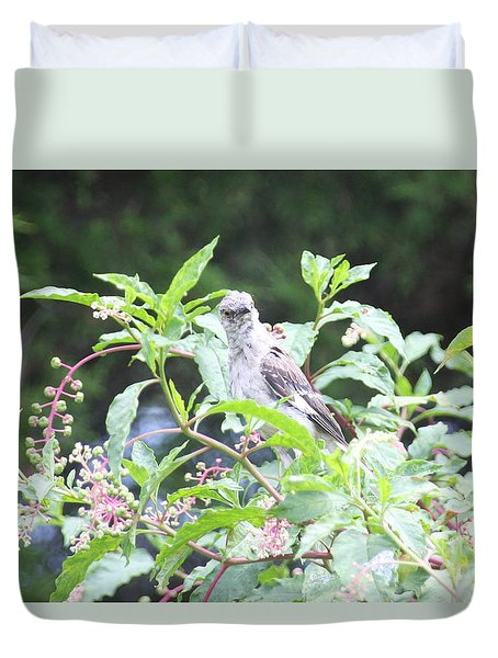 Ruffled Feathers Duvet Cover by Wendy Coulson
