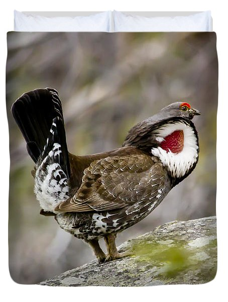 Ruffled Grouse Duvet Cover