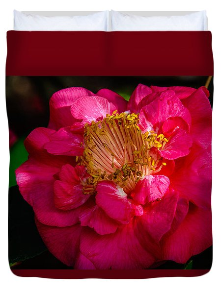 Ruffles Of Pink  Duvet Cover by John Harding