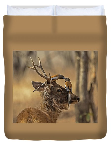 Rufous Treepies Duvet Cover