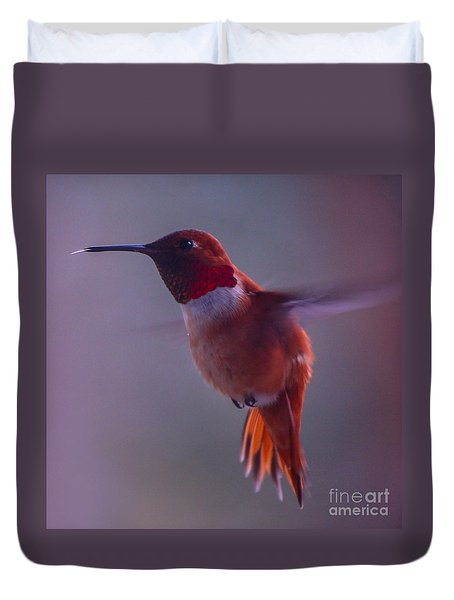 Rufus Hummingbird Duvet Cover by Chuck Flewelling