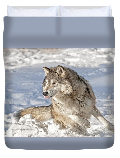 Running Wolf Duvet Cover
