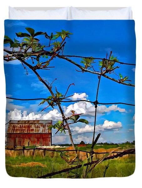 Rustic Frame Paint Duvet Cover by Steve Harrington