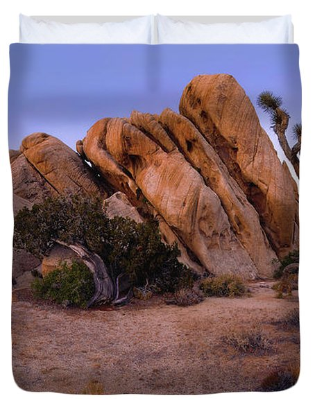 Ryan Mountain Rock Formation Pano View Duvet Cover