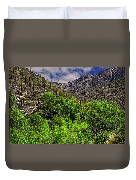 Duvet Cover featuring the photograph Sabino Canyon H33 by Mark Myhaver