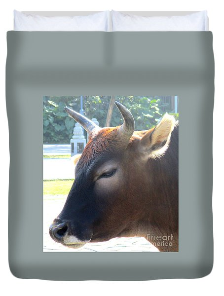 Duvet Cover featuring the photograph Sacred Cow 4 by Randall Weidner