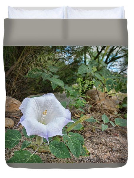 Duvet Cover featuring the photograph Sacred Datura by Dan McManus